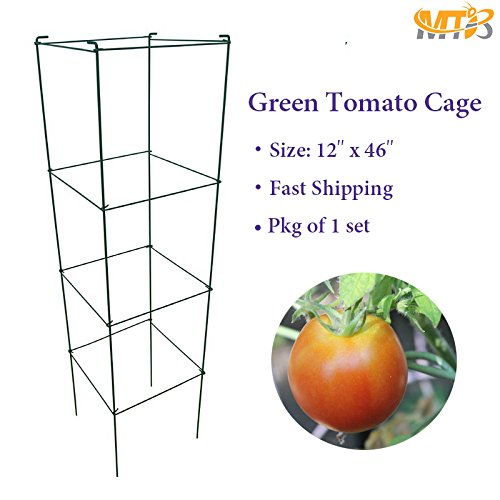 MTB Green Square Folding Tomato Cage Plant Support Tower 12 inch by 46 inch, Pack of 1 set (Also Sold as Pack of 10 (Cheap Tomato Cages)