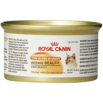Royal Canin Canned Cat Food, Intense Beauty, Thin Slices in Gravy (Pack of