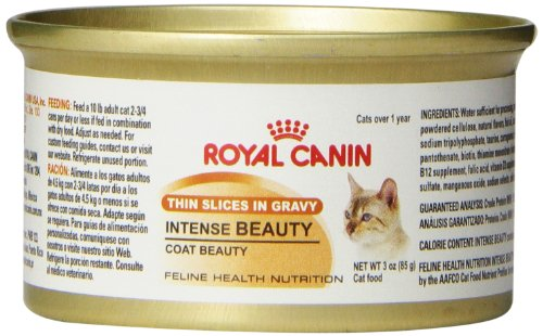 Royal Canin Canned Cat Food, Intense Beauty, Thin Slices in Gravy (Pack of 24 3-Ounce Cans)