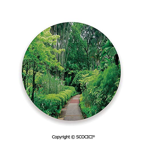 Ceramic Coaster With Cork Mat on the back side, Tabletop Protection for Any Table Type, round coaster,Forest,Green Plants Trees in Singapore Asia Botanic Gardens,3.9