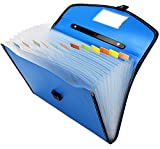 Tranbo Full Expanding A4 Document Organizer With 13 Pockets, Handle, Index Tab (Blue)