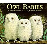 By Martin Waddell Owl Babies Board BOOK