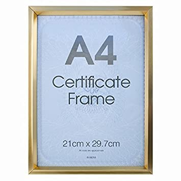 A4 Certificate Photo Picture Frame Black/Silver/Gold--(Gold): Amazon ...