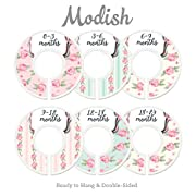 Modish Labels Baby Nursery Closet Dividers, Closet Organizers, Nursery Decor, Baby Girl, Flowers, Roses, Pink, Mint, Shabby Chic