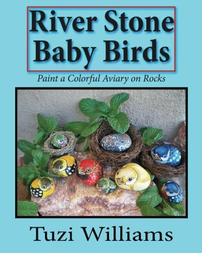 (River Stone Baby Birds: Paint a Colorful Aviary on)