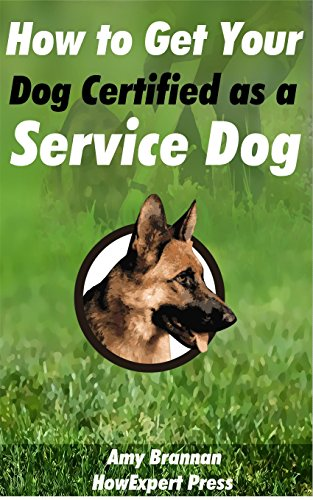 How to Get Your Dog Certified as a Service Dog (Certify Your Dog As A Service Dog)