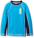 Gymboree Big Boys' Blue Rashguard with Pineapple Graphic, Monterey Bay, Small