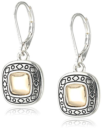 Tone Drop Fashion Earrings - 1