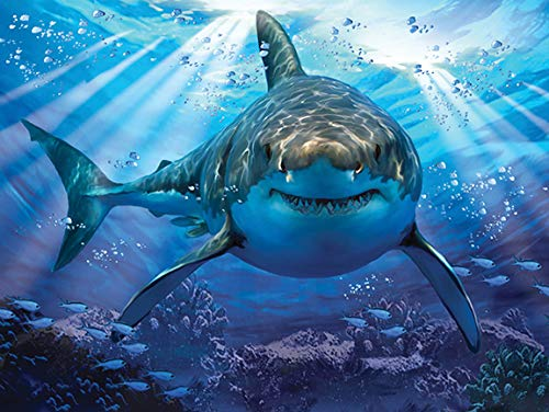 3d Lenticular Puzzle - Super 3D Lenticular Great White Shark Jigsaw Puzzle 500 piece