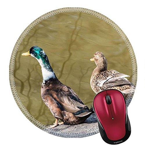 Liili Round Mouse Pad Natural Rubber Mousepad ducks stand ashore Photo (Drake Pedestal)