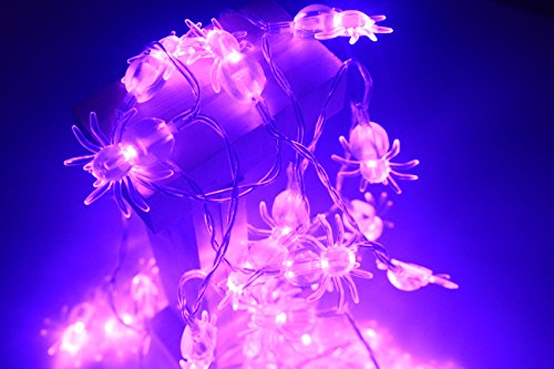 Purple Spider Decoration String Lights,40 leds Christmas and Halloween String Lights Battery Operated waterproof for Halloween Garden,Window,pary,bar Decorations (Purple Spider)