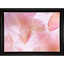 "Frame USA Flores Congeladas 639 Framed Print 18.0""x25.5"" by Moises Levy-MOILEV126314, 18x25.5, Bistro Expresso"