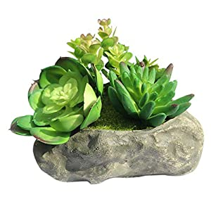 Myartte Home Decor Office Decor-Artificial Shrubs Artificial Succulent Plants Mini Fake Plants for Beautifying Our Life and Home Environment 92