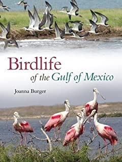Birdlife Of The Gulf Mexico Harte Research Institute For Studies Series