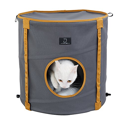 80%OFF A4pet Curious Cat Cube, Cat House, Cat Condo with Comfortable Bed