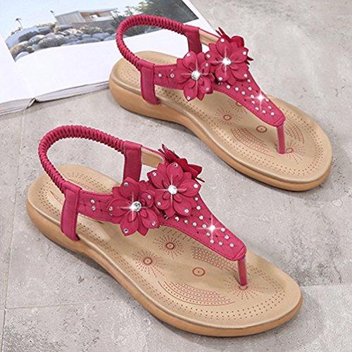 Plates Rouge Ouvertes Mode Femmes Tongs Antidérapantes Résistant à de L'usure Sandales Plage Sandale Talons nxUq68zOzw