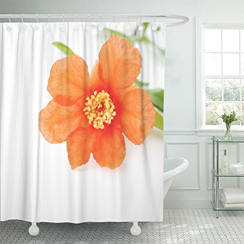 - AA0AA shower curtain Green Blossom Flower of Pomegranate Red Blooming shower curtain 72 x 72 Inches shower curtain with plastic Hooks