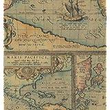 World Map Gift Wrap Flat Sheet 24
