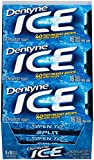 Dentyne Ice Sugar-Free Gum (Peppermint, 16 Piece, Pack of 9)
