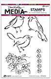 Ranger Scribbly Bird Cousins Dina Wakley Media Cling Stamps, 6''X9''