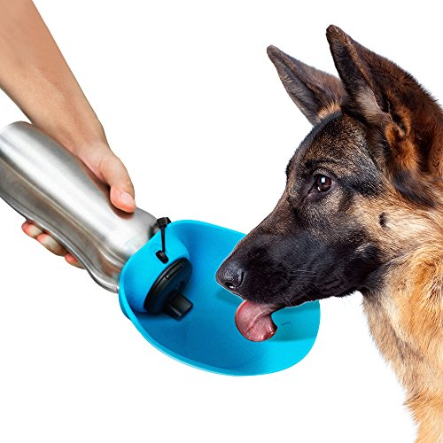 PupFlask Portable Water Bottle For Walking | 24 OZ Stainless Steel | Convenient Dog Travel Water Bottle Keeps Pup Hydrated | Portable Dog Water Bowl & Travel Water Bottle For Dogs (Nebulas Blue)