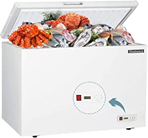 BLUELINETECH 10 Cubic Feet Chest Freezer White with Wire Storage Basket for Home, Kitchen, Garage, and Business (BCF10FA, 10 Cu ft)