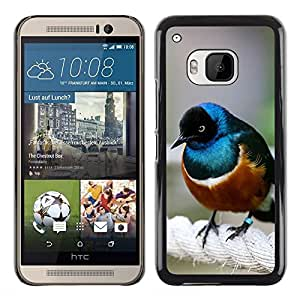 Planetar® ( Bird Blue Brown Sea Nature Cute Small ) HTC One M9 Fundas Cover Cubre Hard Case Cover