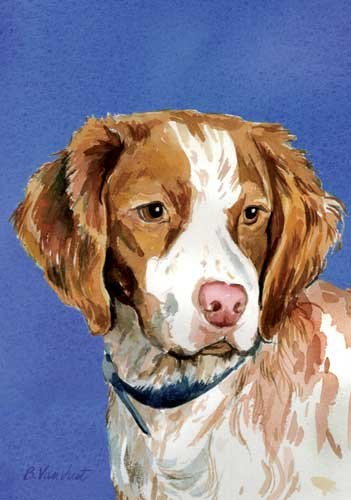 Dog Breed Brittany Spaniel - Brittany Spaniel Dog Breed Patriotic House Flag 28 x 40 Inches