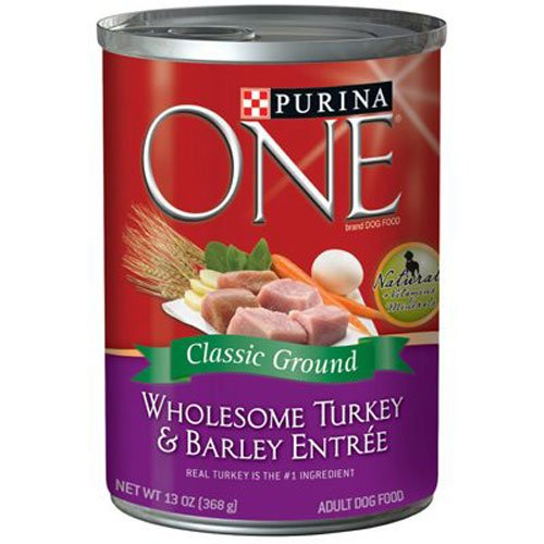 Purina One Smartblend Adult Dog Food Turkey & Barley Entree