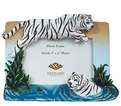 Amazon.com - WHITE TIGER \'Leap of Faith\' special relief frame - 4x6 ...