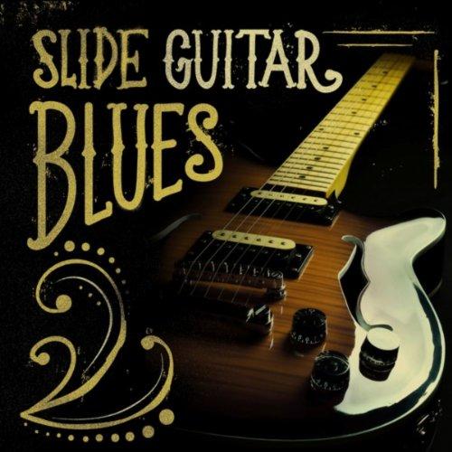 Muddy Waters Slide Guitar - 6