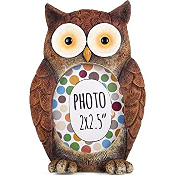Amazon.com : Wise Old Owl - Forest Friends - Photo Frame - Novelty ...
