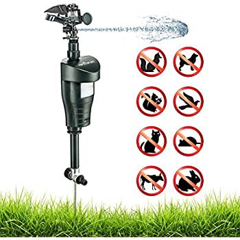 Water Jet Blaster Animal Pest Repeller – Ultra Humane & Safe Way of Scaring Away Wild Animals – Cats, Dogs, Birds, Squirrels, Etc. – Effective Motion Sensor Activated – Metal Stake, Clear Instructions