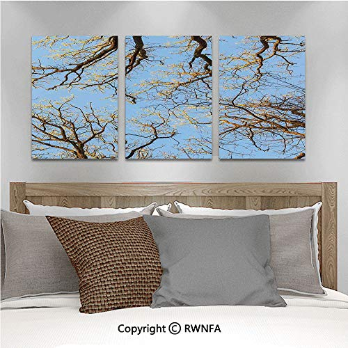 3PCS Triple Decoration Painting Crown of Trees Under Vibrant Sky Twig Birch Tranquil Air Radial Image Living Room Dining Room Studying Aisle Painting,19.7
