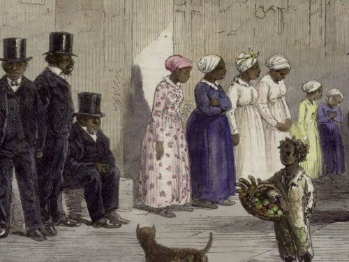 The Age of Slavery (1800-1860)