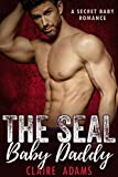 SEAL Baby Daddy (A Secret Baby Romance)