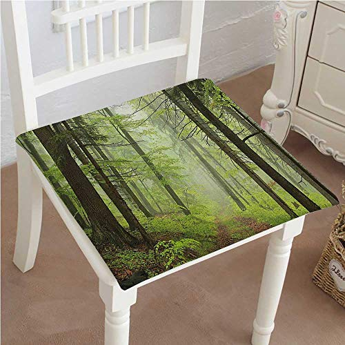 Outdoor Chair Alder (Dining Chair Pad Cushion Trough Foggy Alders Beeches Oaks Coniferous Grove Hiking Theme Light Green Light Yellow Fashions Indoor/Outdoor Bistro Chair Cushion 26
