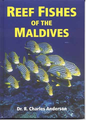Download Reef Fishes of the Maldives pdf epub