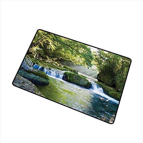 Pet Door mat Rainforest Waterfall Decor Foliage Jungle Misty Mountains and Mossy Rocks View Print W31 xL47 All Season General Polyester