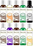 Top 10 Carrier Oil Variety Set 2 oz - Cold Pressed 100% Pure Natural, Sweet Almond, Apricot Kernel, Argan, Avocado, Castor, Fractionated Coconut, Grapeseed, Jojoba, Olive and Sunflower.