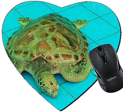 MSD Mousepad Heart Shaped Mouse Pads/Mat design 20075898 Sleeping in the Pond Aquaculture (Aquaculture Pond)