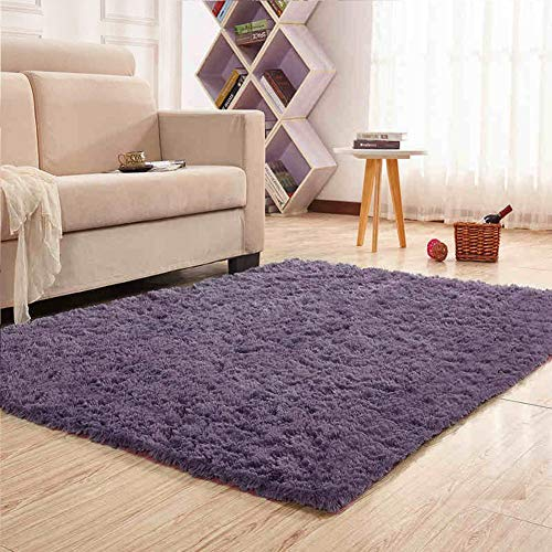 Noahas Super Soft Modern Shag Area Rugs Fluffy Living Room Carpet Comfy