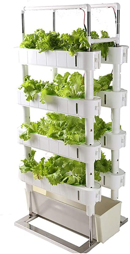 Hydroponics Growing System Kit With Timer And Fill Light 4 Layers Home Vertical Garden Tower For Vegetables Planter Amazon Ca Sports Outdoors