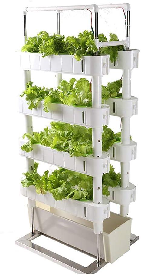 ZDYLM-Y Kit de Cultivo Hidropónico con Temporizador y luz de Relleno, Torre de jardín Vertical para el hogar de 4 Capas, para macetas de Verduras: Amazon.es: Deportes y aire libre