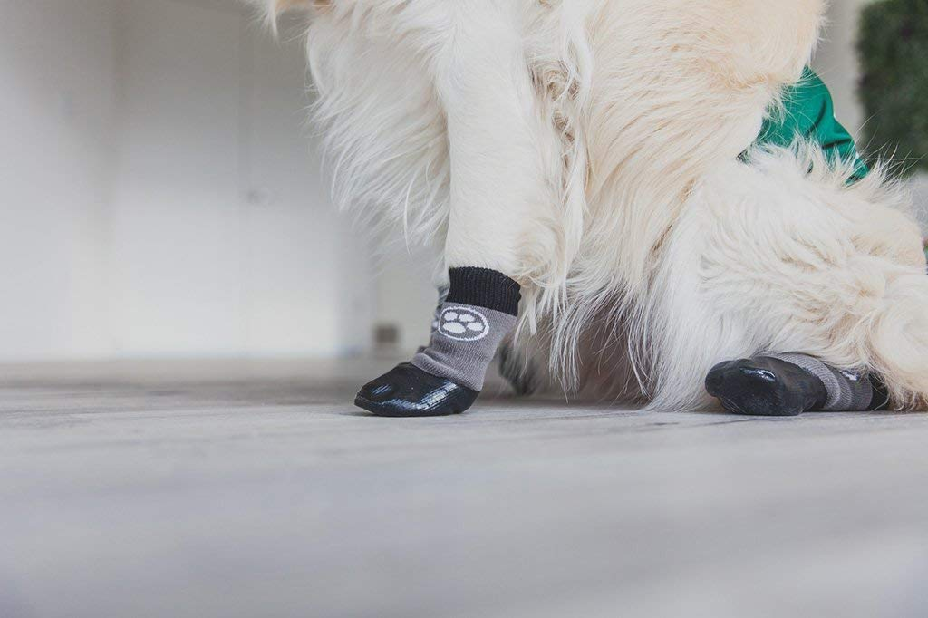 Grippers Non Slip Dog Socks | Traction Control for Indoor Wear | Dog Paw Protection | Non Skid Dog Booties Grip (S) by Dog Quality