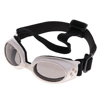 e5684f95bd NON Sharplace Gafas de Sol para Perros Lentes Protectores Cinturón de  Plástico contra Rayos UV - Blanco: Amazon.es: Deportes y aire libre