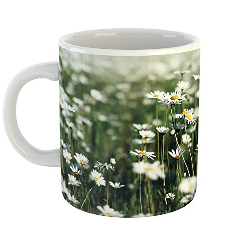 Westlake Art - Wildflower Daisy - 11oz Coffee Cup Mug - Modern Picture Photography Artwork Home Office Birthday Gift - 11 Ounce (6A32-074DD) - Daisy Coffee Cup