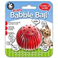Pet Qwerks Blinky Babble Ball Interactive Dog Toy, Flashes & Talks when Touched