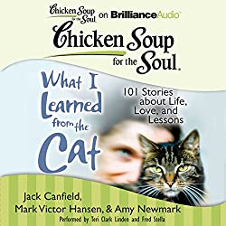 Chicken Soup for the Soul: What I Learned from the Cat