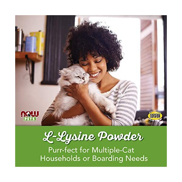 NOW Pet Health, L-Lysine Supplement, Powder, Formulated for Cats, NASC Certified, 8-Ounce 4